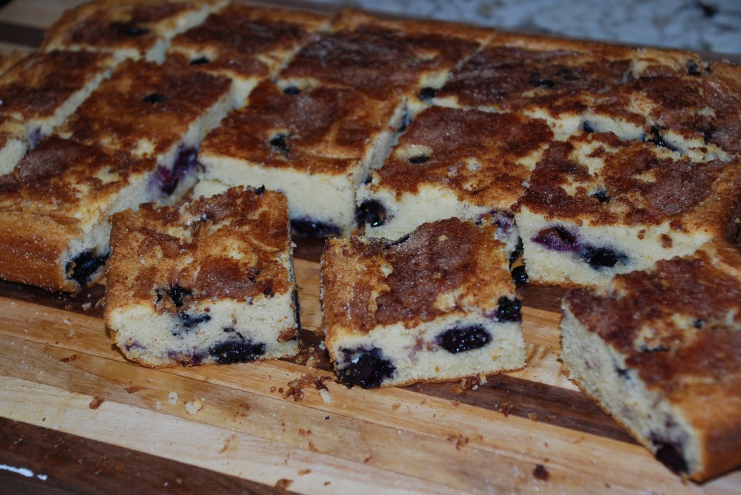 Blueberry Snack Cake from www.PieLadyLife.com
